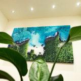 Canvas print M100