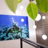 40×50inc Acrylic panel